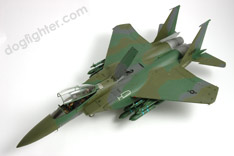 F-15E Eagle Green Gamouflage