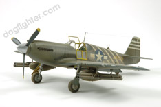 Accurate Miniature P-51A Mustang
